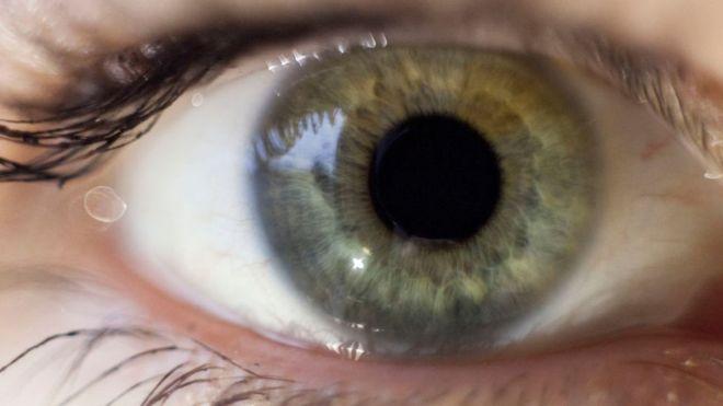 新的斯特林大学测试通过跟踪眼球运动来暴露谎言