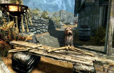 天际中的这只狗想卖给你一些骨头